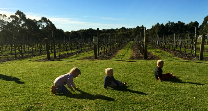 Boston Beer Co & Willoughby Park near the town of Denmark, Western Australia is a great example of an ultra family-friendly winery in Western Australia