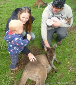 Uralla Wildlife Sanctaury Voilunteers| Travel Diary | DIscover Australia | OurGlobetrotters.Net