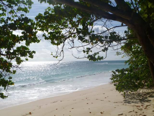 Life's a beach as a Seychelles Mama | Global Parenting Interview | OurGlobetrotters.Net