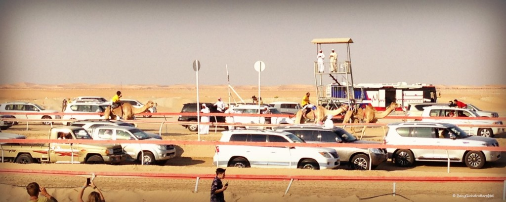 Al Dhafra Festival with Kids - Camel Racing | Discover the UAE | OurGlobetrotters.Net