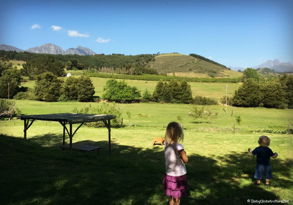Stunning scenery in Stellenbosch | Cape Town with Kids | Travel Diary | OurGlobetrotters.Net