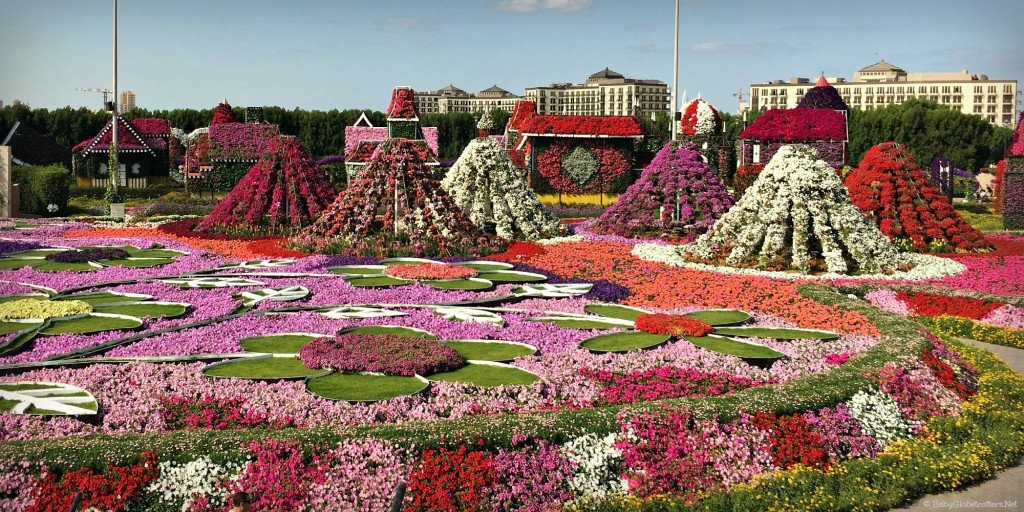Dubai Miracle Gardens | DIscover the UAE | OurGlobetrotters.Net
