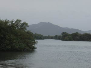 Kalba Mangrove | Explore My City = Sharjah | OurGlobetrotters.Net