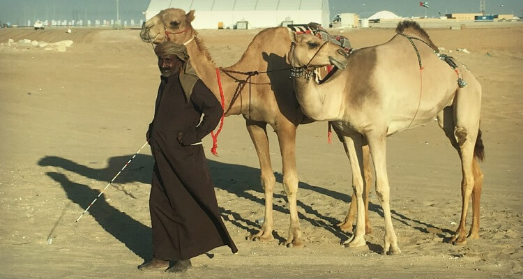 Culture in the UAE