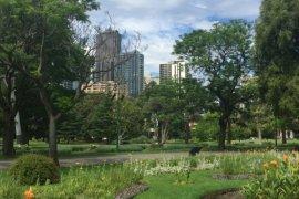 Melbourne's botanical gardens |