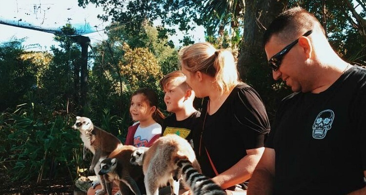 Royal Melbourne Zoo | Best Australian Animal Encounters | Our Globetrotters