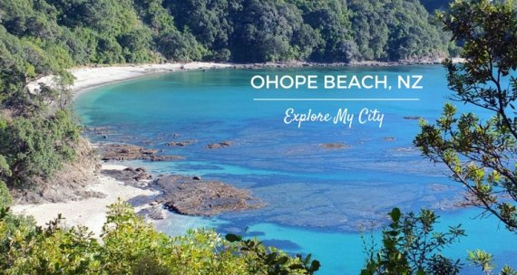Insiders Guide to New Zealand's most loved Beach | Ohope Beach with insider Anita Burgess | Explore My City on Our Globetrotters