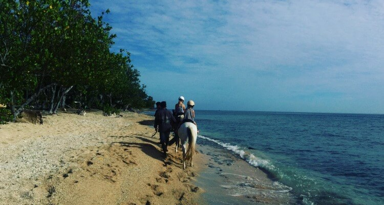 Bali Hidden Gems Pemuteran | Horse Riding on the Beach | Bali Vacation