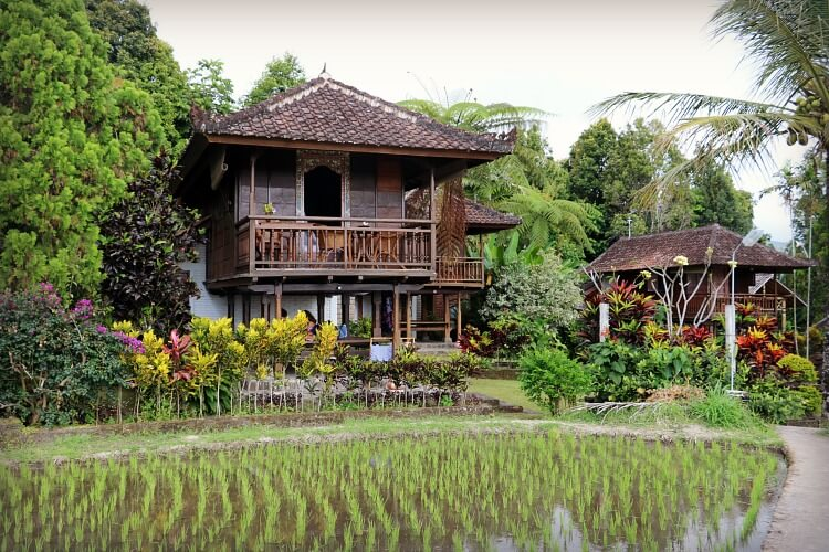 Hidden Gems of Bali away from the Crowds   Puri Lumbung World of Travels with Kids