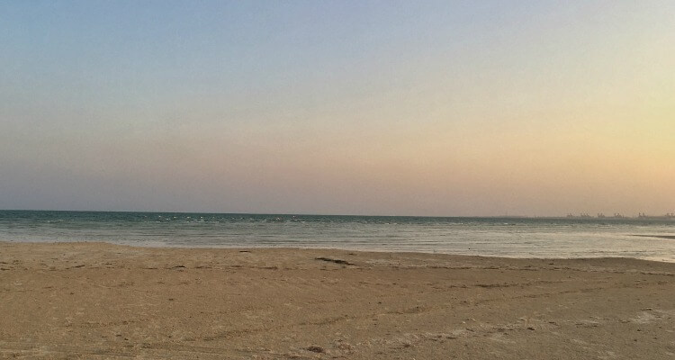 Flamingos flying by at sunrise - beach from near AL Hamra Abu Dhabi