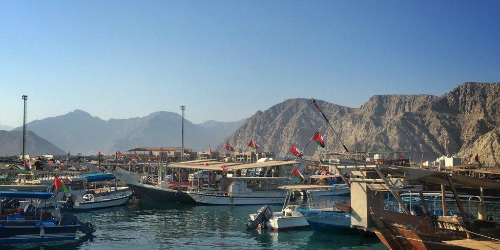 Musandam dolphin tour with kids | Discover the Musandam Peninsular Oman