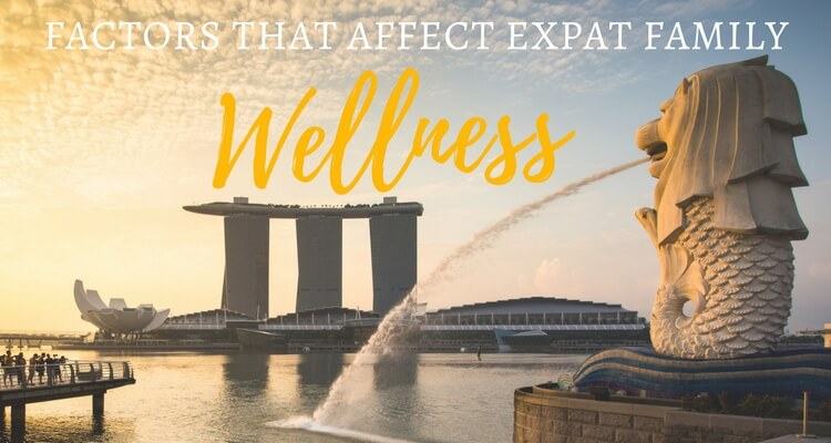 What factors affect expat family 'wellness'?